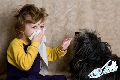 аллергия на животных у детей