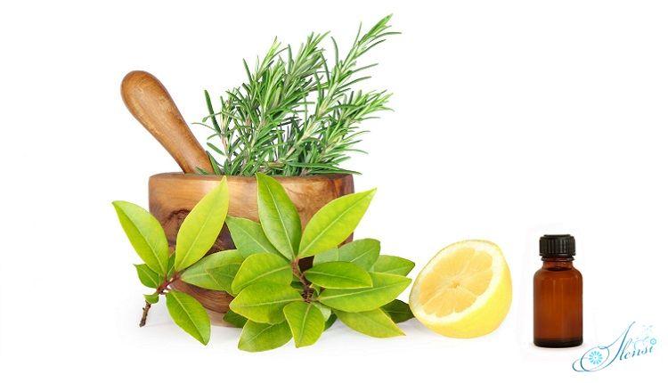 масло в бутылочке, зелень байевого дерева, лавровый лист, лимон, ступка