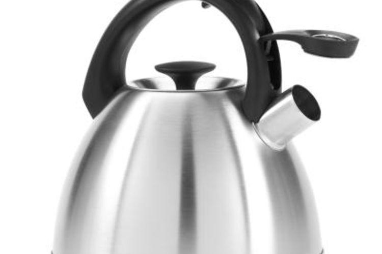 Чайник из нержавейки без накипи