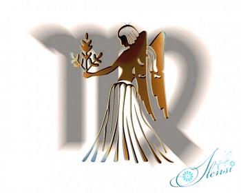 любовный гороскоп дева на 2014