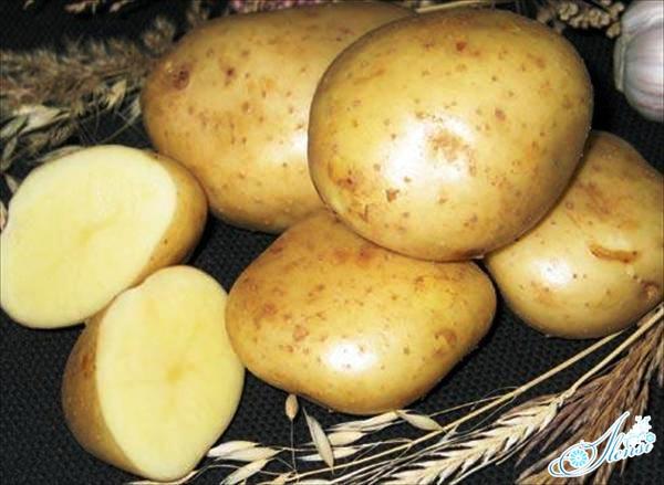 Картофель для маски