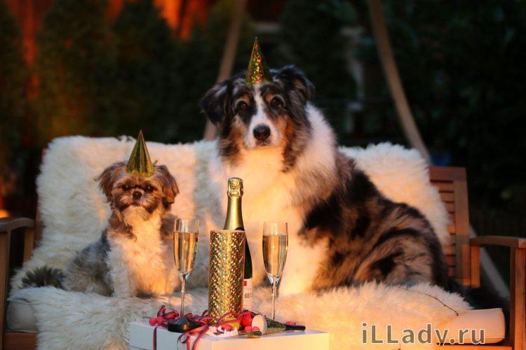 забавные конкурсы на новый год