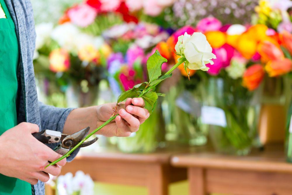 Какие цветы подарить, чтобы дольше простояли?